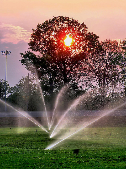 aerobic sprinklers sunset