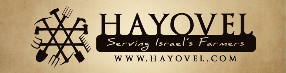 HaYovel Beaumont Christians to tour Israel