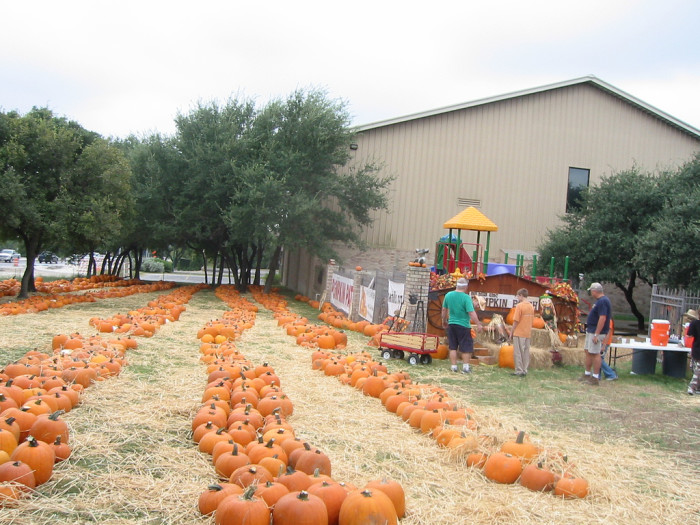 Wesley United Methodist Beaumont pumpkin patch