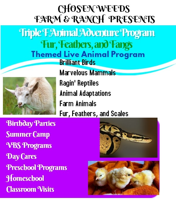 Triple F Animal Adventures, SETX kids parties, SETX VBS, children's ministry Southeast Texas
