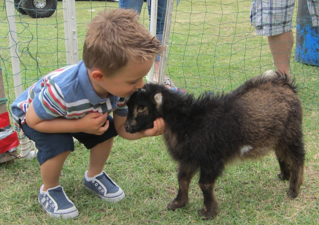 animal encounters Port Arthur, SETX animal adventures, SETX kids activities, children's party ideas Beaumont TX
