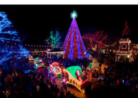 Vidor Christmas Calendar: Lights At Pine Forest December 16th